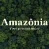 Imagem: Amazônia