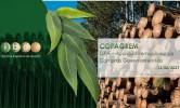 GPA-Acordo Int. de Compras Governamentais – Ibá